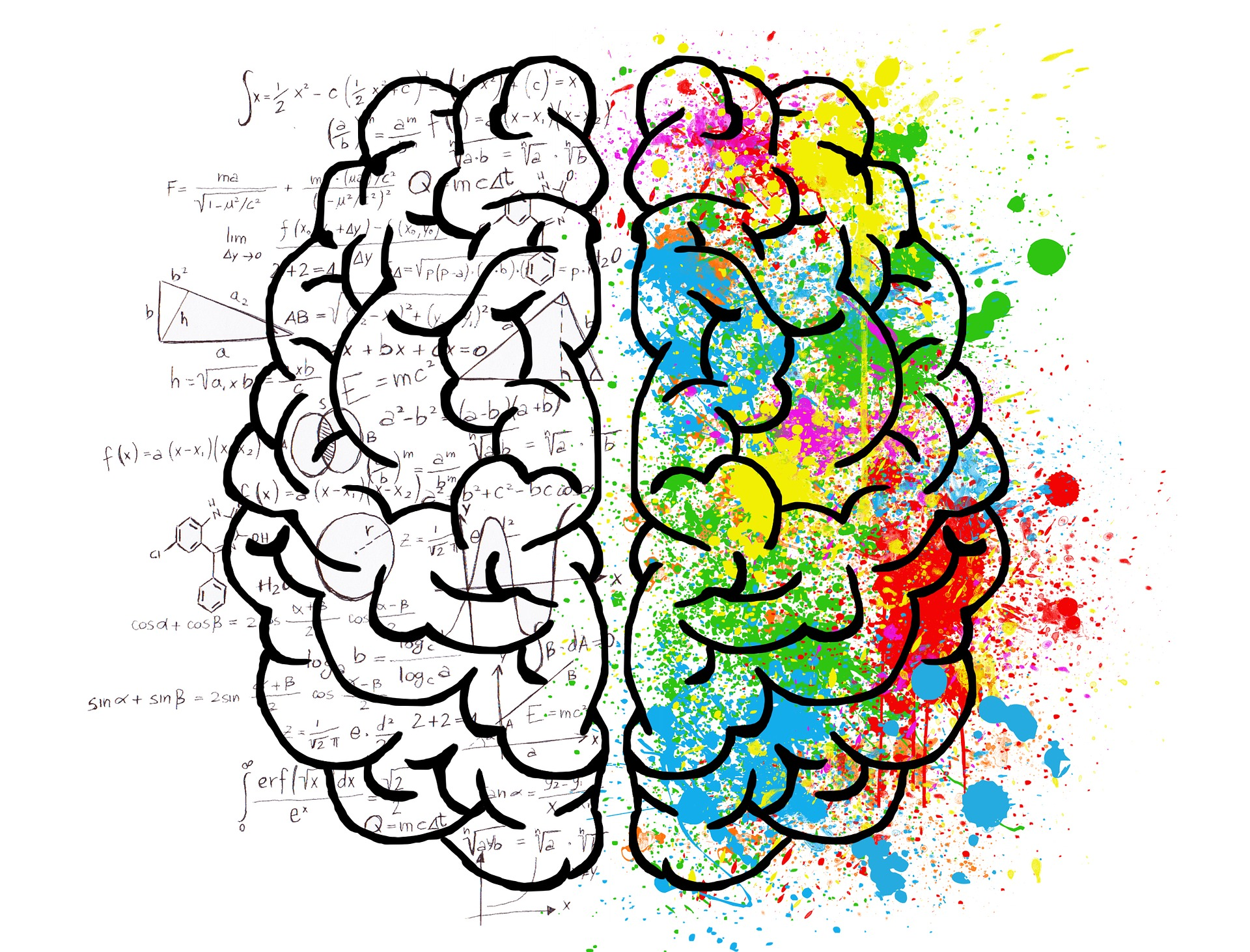 Brain Hemispheres Image – Rick Goodman